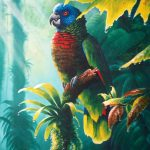 'A shady spot' St. Lucia Parrot, Acrylic on canvas, 20x16""