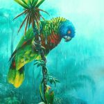 'Drenched' St. Lucia Parrot, Acrylic on canvas, 20x16""