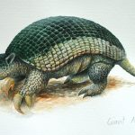"Giant Armadillo, Acrylic on paper, 12x16"" (for WWF Guianas poster)"