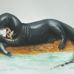"Giant River Otter, Acrylic on paper, 12x16"" (for WWF Guianas poster)"