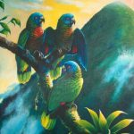"""'Gimie Dawn 1' St. Lucia Parrots, Acrylic on canvas, 40x32"""""""