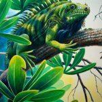 "'Lazin' St. Lucia Iguana, Acrylic on paper, 22x14"""