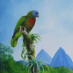 St. Lucia Parrot & les Pitons, Acrylic on canvas,