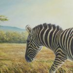 Zebra, Oil on hardboard, 24x30""